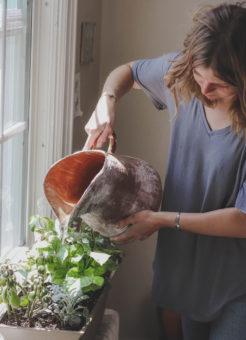 Woman watering houseplants.